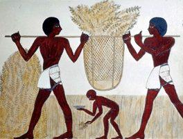 Egipto y los comedores de pan